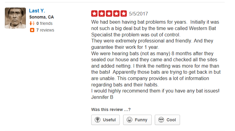 Yelp Review Last Y